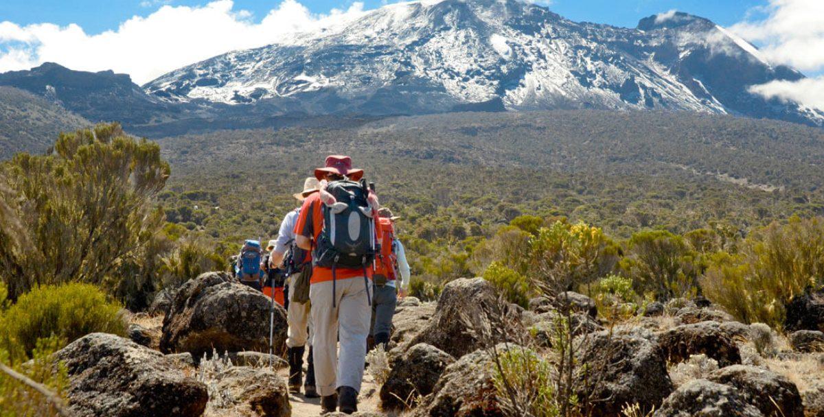 Climb Kilimanjaro Lemosho