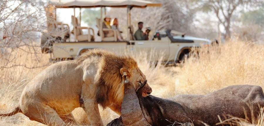 5 days – Tanzania Experience Safari